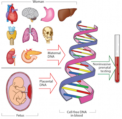 Advances-in-genomic-testing.jpg#asset:96