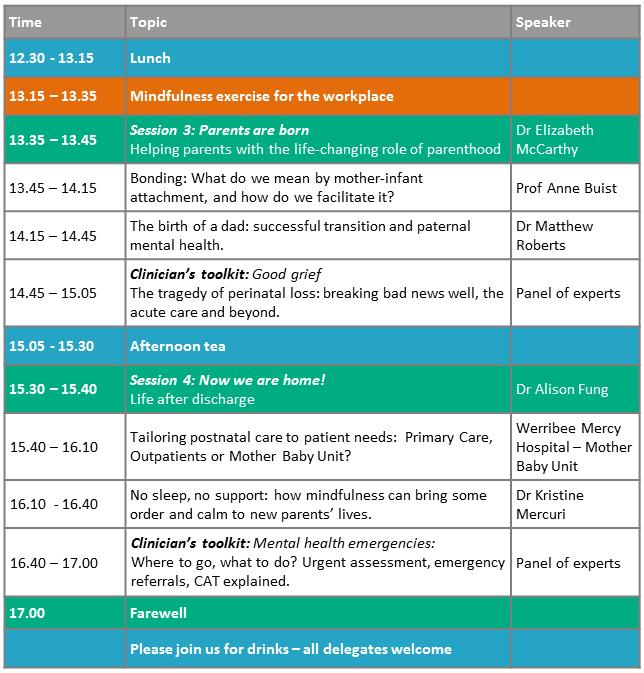 Mercy-Perinatal-Mental-Health-Seminar-program-PM-250717.png#asset:1750